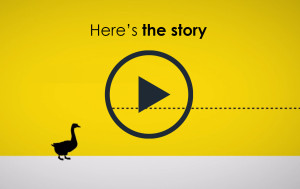 NOV-story-thumbnail